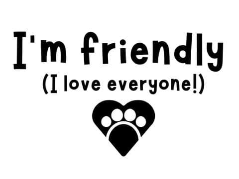 I'M FRIENDLY PRINTED DOG BANDANA
