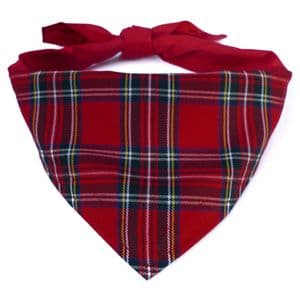 ROYAL STEWART DOG BANDANA