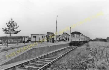 Abbey Railway Station Photo. Stoke Ferry - Ryston. Denver Line. (11).