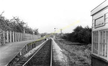 Ashcott & Meare Railway Station Photo. Glastonbury - Shapwick. S&DJR. (19)