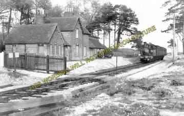 Ashey Railway Station Photo. Ryde - Haven Street. Newport Line. (1)
