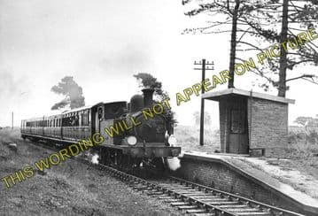 Ashey Railway Station Photo. Ryde - Haven Street. Newport Line. (4)