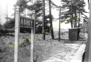 Ashey Railway Station Photo. Ryde - Haven Street. Newport Line. (8)
