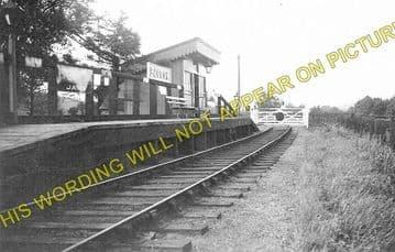 Bacton Railway Station Photo. Abbeydore - Vowchurch. Peterchurch Line. (1)