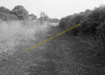 Barnwell Railway Station Photo. Thorpe to Oundle. Thrapston & Wansford Line (10)