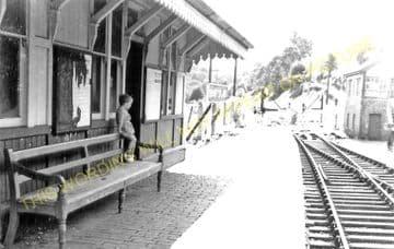 Bronwydd Arms Railway Station Photo. Carmarthen - Conwil. Pencader Line. (1)