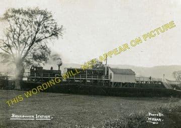 Bryngwyn Railway Station Photo. Llanfyllin - Llanfechain. Llanymynech Line (7)