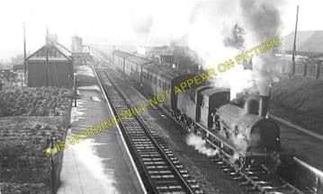 Bungay Railway Station Photo. Earsham - Ditchingham. Tivetshall to Beccles. (3)