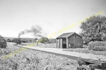 Capel Bangor Railway Station Photo. Vale of Rheidol Railway. (3)