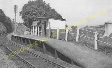 Caradog Falls Railway Station Photo. Strata Florida - Trawscoed. (7)