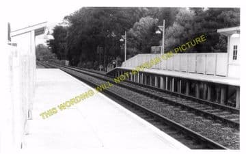 Cattistock Railway Station Photo. Evershot - Maiden Newton. Yeovil Line. (6)