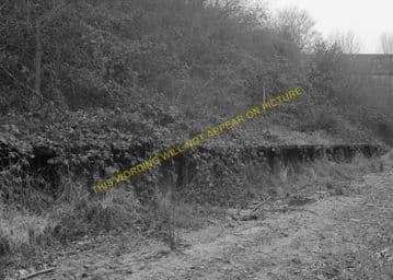 Corfe Mullen Railway Station Photo. Broadstone - Bailey Gate. S&DJR. (3)