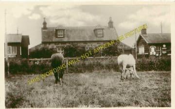 Delny Railway Station Photo. Invergordon - Kildary. Dingwall to Tain Line. (3)
