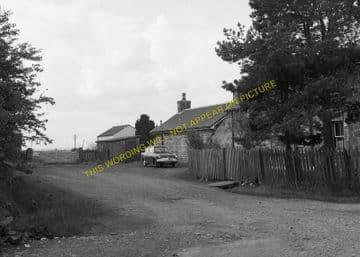 Delny Railway Station Photo. Invergordon - Kildary. Dingwall to Tain Line. (6)