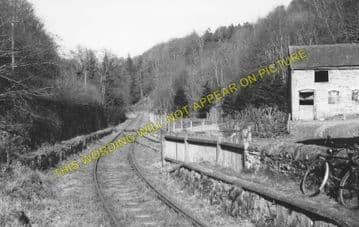 Fronfraith Railway Station Photo. Abermule - Kerry. Cambrian Railway. (1)..