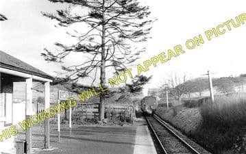Llanfechain Railway Station Photo. Llansantffraid- Bryngwyn. Llanfyllin Line (2)