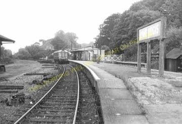 Lyme Regis Railway Station Photo. Combpyne and Axminster Line. L&SWR (26)