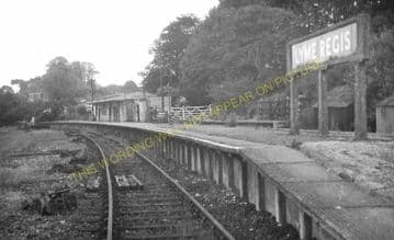 Lyme Regis Railway Station Photo. Combpyne and Axminster Line. L&SWR (33)