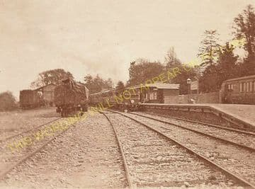 Lyme Regis Railway Station Photo. Combpyne and Axminster Line. L&SWR (34)