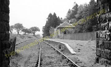 Macbie Hill Railway Station Photo.  Lamancha - Broomlee. Leadburn Line. (1)