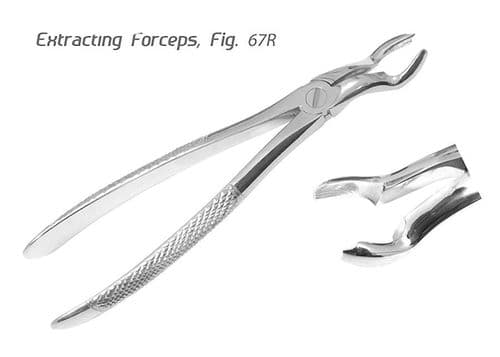 Dental Tooth Extracting Forcep Dental Upper Molar Extraction Instrument Fig.67R