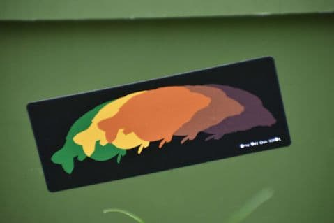 Petals Carp Autumn Colours Sticker