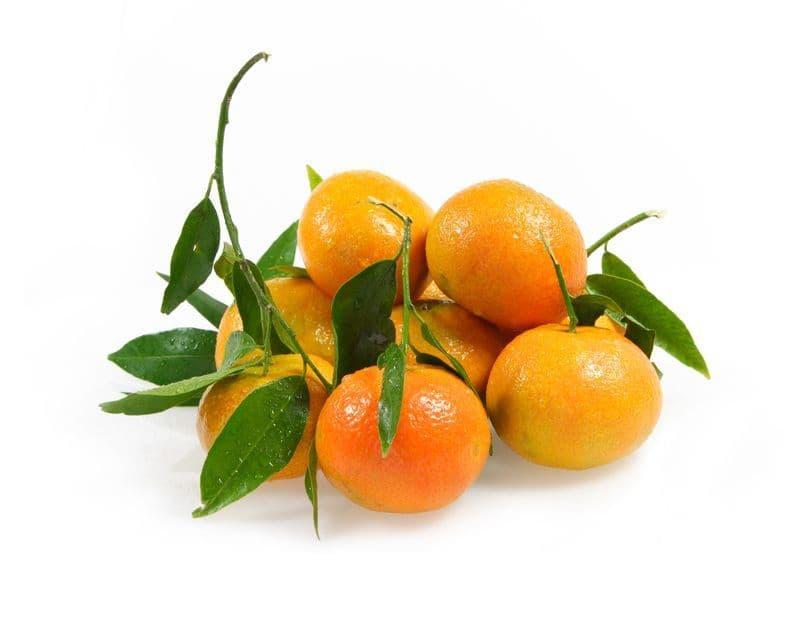 Clementine Corse Bio*