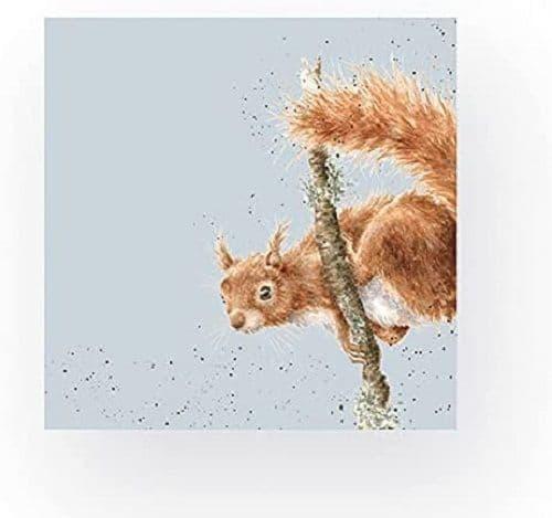 Wrendale Designs Acrobat Squirrel 3-ply Eco-Friendly 20 Party Napkins Serviette 33cm