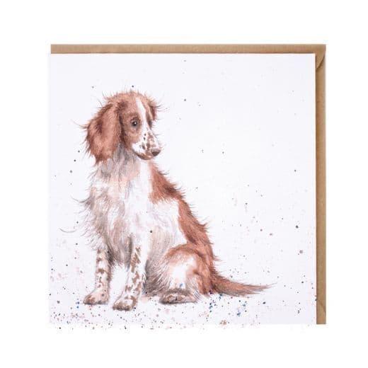 Wrendale Designs Loyal Friend Spaniel Dog Blank Inside Greetings Card 15x15cm