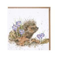 Wrendale Designs New Beginnings Hedgehog Blank Inside Greetings Card 15x15cm