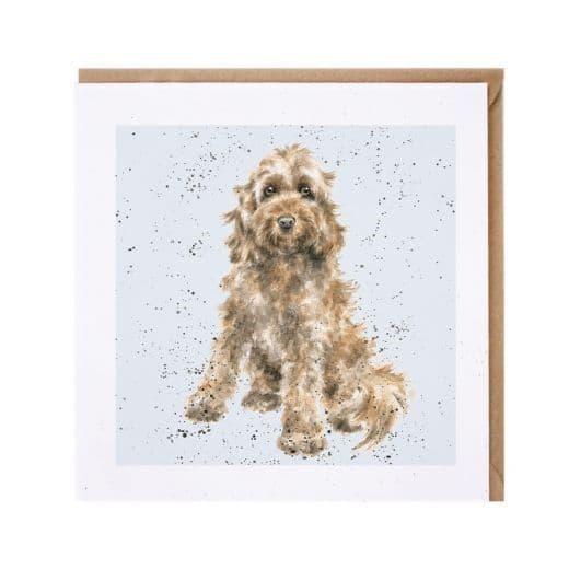 Wrendale Designs Ruby the Cockapoo Dog Blank Inside Greetings Card 15x15cm