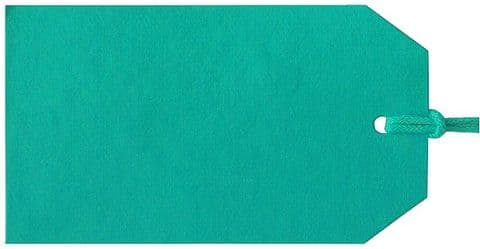V04749 - Plain Gift Tags Turquoise GTP45 30/PK