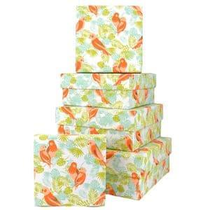 V45957 - Parrots Square Nest of 5 Gift Boxes 1/PK
