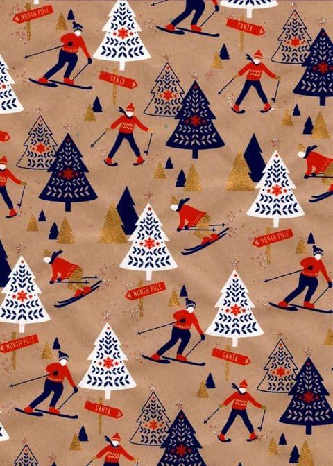 FW221 Skiers