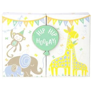 V48934 - Baby Animals Gift Card Box 4/PK