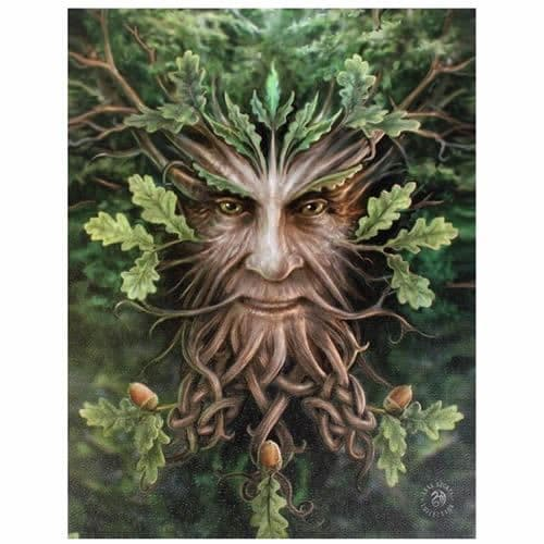 Tree Man Canvas Picture by Anne Stokes