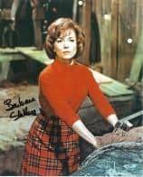 Barbara Shelley HAMMER HORROR Genuine Signed Autograph  10 x 8  COA 5991