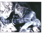 Laurie Goode DOCTOR WHO 10x8 Genuine Signed Autograph  10 x 8 COA 10226