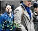 "Scott Stevenson ""Fantastic Beasts"" genuine signed autograph 10x8 COA 12161"