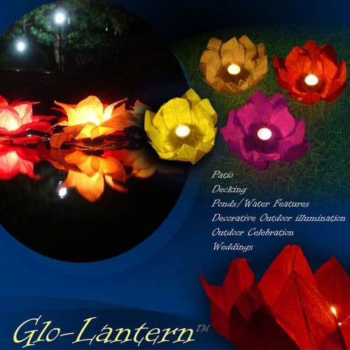 Garden Water/Pond Chinese Lantern