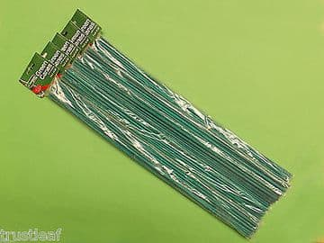 100 Pack of 60cm long Green Canes